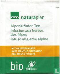 Alpenkräuter-Tee mit Orangenminze