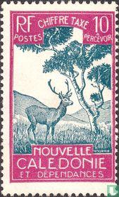 Hert en niaouli