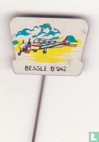 Beagle B - 242