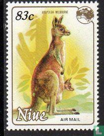 Koalas et des kangourous