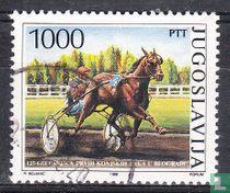 125 jaar paardensport