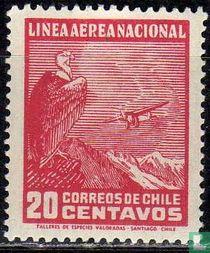 Vliegtuig en condor