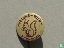 - Veluws - Wild- Eekhoorn