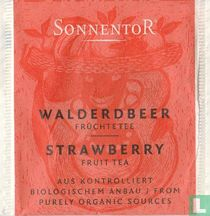 3 Walderdbeer Früchtetee | Strawberry Fruit Tea