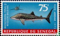 Zee fauna