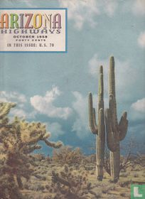 Arizona Highways 10