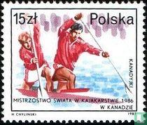 Successen Poolse Sporters