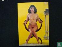 Nostalgisch vrouwelijk naakt