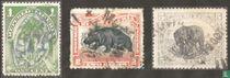 Oliepalm, dwergnijlpaard en olifant