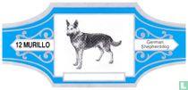 German Shepherddog