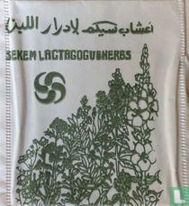 Lactagogveherbs