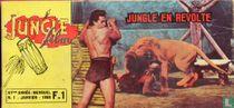 Jungle Film 1