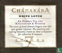 7 - White Lotus