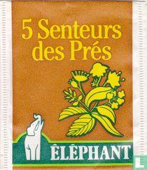 5 Senteurs des Prés