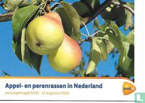Apple and pear varieties in the Netherlands