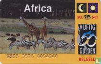 Landenkaart Afrika