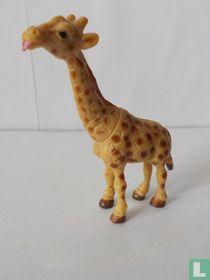 Giraf 'Ory'