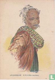 Javaansche Sirihpruimster