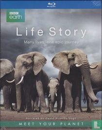 Life Story - Many Lives, One Epic Journey