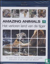 Amazing Animals - Her verloren land van de Tijger