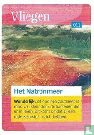 Het Natronmeer
