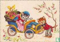 Auto met katten