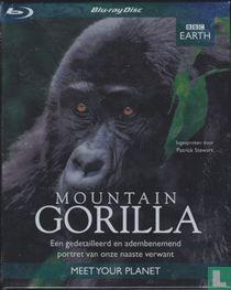 Mountain Gorilla - Een gedetailleerd en adembenemend portret van onze naaste verwant