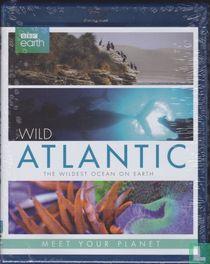 Wild Atlantic - The Wildest Ocean on Earth