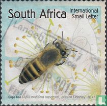 Bees for Africa