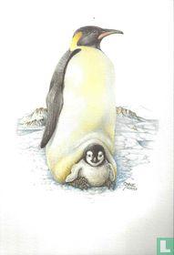 Vogels - Keizerspinguïn