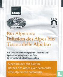 Alpenkräuter mit Kamille