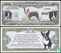 Boston terrier - biljet