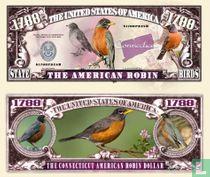 American Robin Connecticut