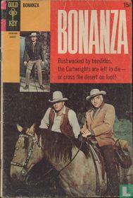 Bonanza 33