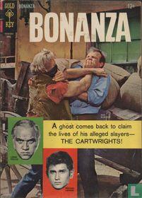 Bonanza 19