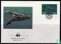 WWF - Walvissen