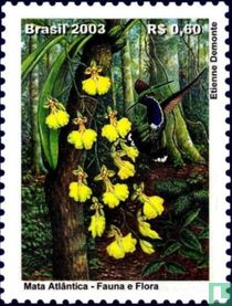 Greeting stamps - Orchids
