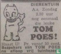 Tom Poes! [Den Haag]