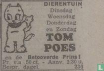 Tom Poes en de betooverde prins (2)