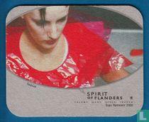Aards of bovenaards ? / Spirit of Flanders