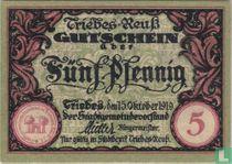 Triebes 5 pfennig 1919