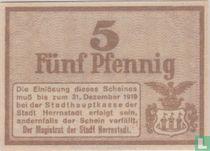 Herrnstadt 5 pfennig 1919