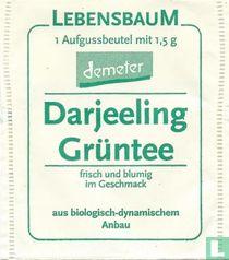 Darjeeling Grüntee