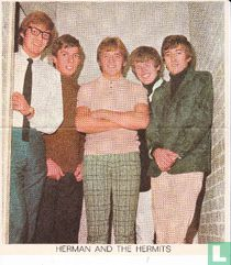 Herman and the Hermits: poster