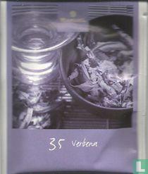 35 Verbena