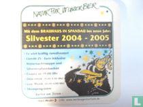 Silvester 2004-2005