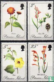 1970 Flora