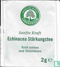 Echinacea Stärkungstee