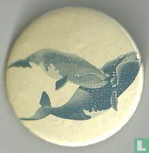 (Walvissen)