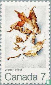 Esdoornbladeren (winter)